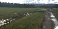 Campo 112 Hectáreas - XIV región.